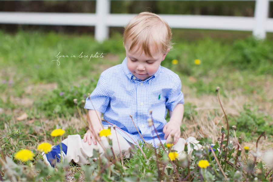 Grandson with wildflowers at the Arlington studio by Lynn in Love Photo, Dallas and Houston Family Photographer