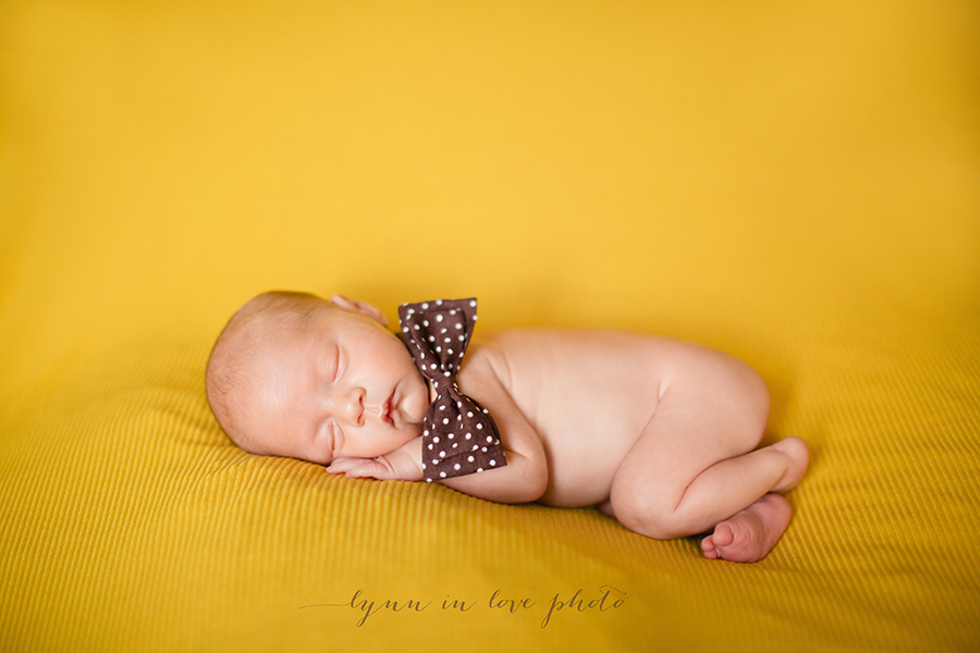 Otto newborn session with bowtie by Lynn in Love Photo, Houston newborn photographer